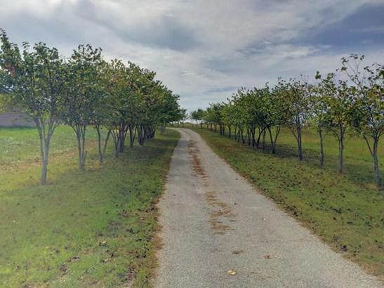 16705 Oak Hill Drive Road, Houston, MO - USA (photo 2)