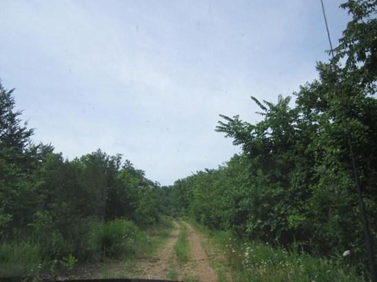 0 State Highway 248, Aurora, MO - USA (photo 4)
