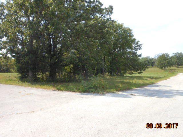 500 Dry Hollow  (5-133) Road, Camdenton, MO - USA (photo 1)