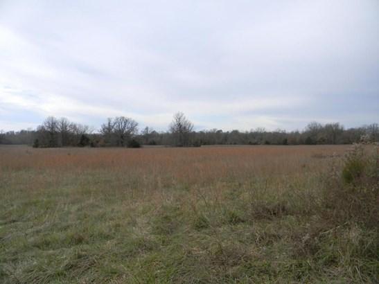 00 North Farm Road 215, Strafford, MO - USA (photo 3)
