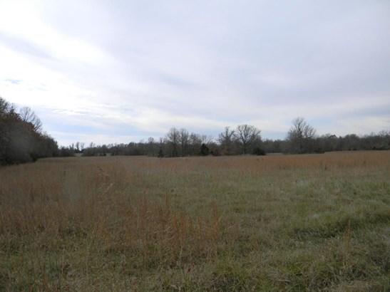 00 North Farm Road 215, Strafford, MO - USA (photo 4)