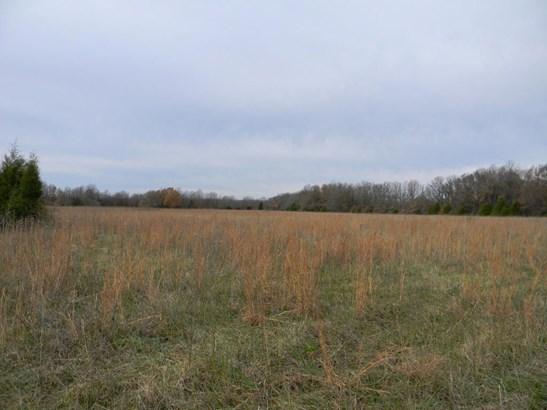 00 North Farm Road 215, Strafford, MO - USA (photo 5)