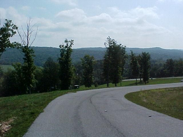 645 Meadowview Lane, Saddlebrooke, MO - USA (photo 3)