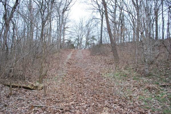 0 Hidden Valley Estates, Clever, MO - USA (photo 5)