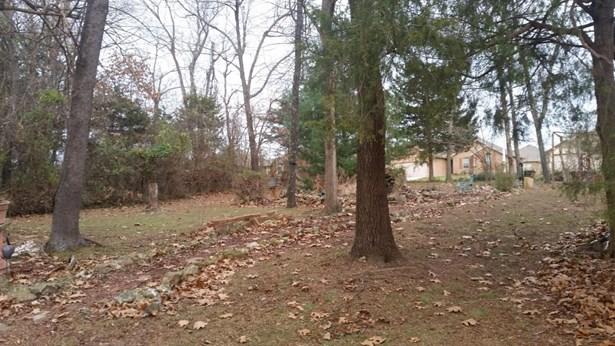 Lot 388 South Cloverdale Lane, Battlefield, MO - USA (photo 1)