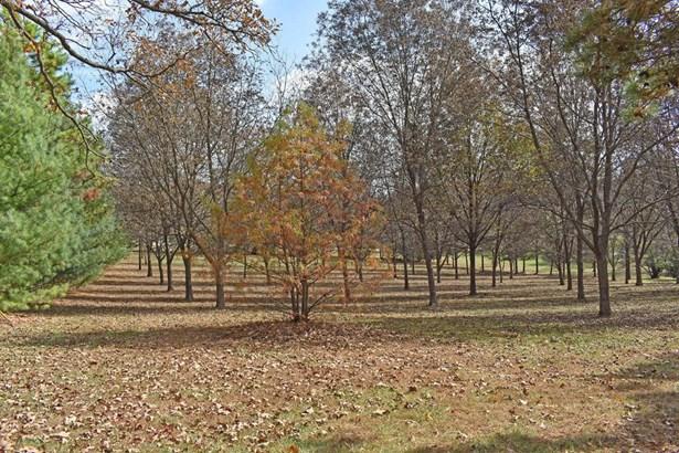 4948 East Farm Road 170, Rogersville, MO - USA (photo 4)