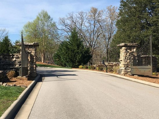 Lot 1 Secret Lane, Branson West, MO - USA (photo 3)