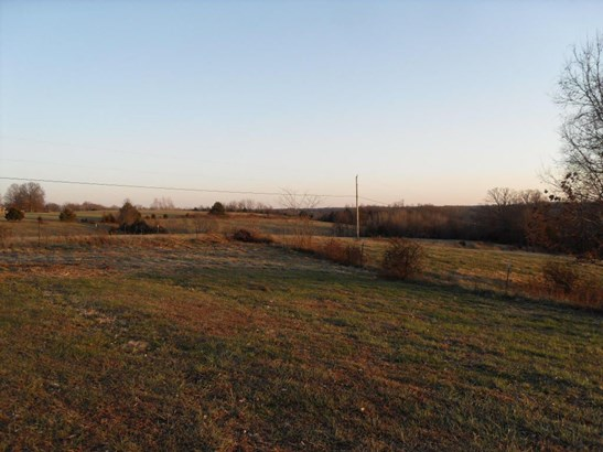 872 Mount Carmel Road, Clever, MO - USA (photo 4)