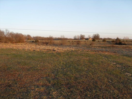 872 Mount Carmel Road, Clever, MO - USA (photo 5)