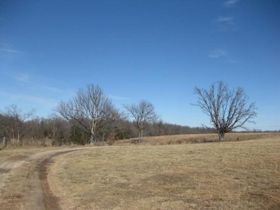 3202 North Farm Rd 75, Bois D Arc, MO - USA (photo 4)