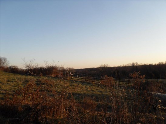 872 Mount Carmel Road, Clever, MO - USA (photo 1)