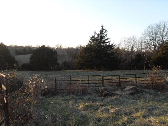 872 Mount Carmel Road, Clever, MO - USA (photo 3)