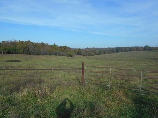 0 North Farm Road 35, Ash Grove, MO - USA (photo 2)