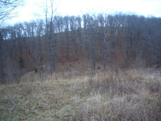 Lot 12 Woods Ridge Drive, Highlandville, MO - USA (photo 2)