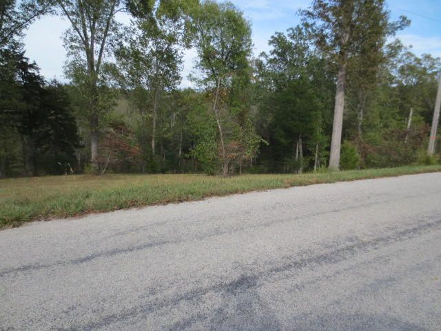 501 Lake Point Road, Kissee Mills, MO - USA (photo 3)