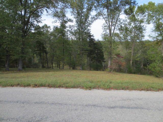 501 Lake Point Road, Kissee Mills, MO - USA (photo 4)