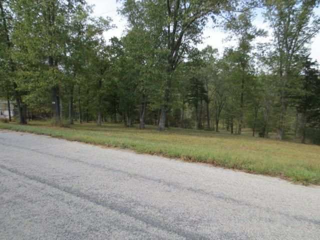 501 Lake Point Road, Kissee Mills, MO - USA (photo 5)