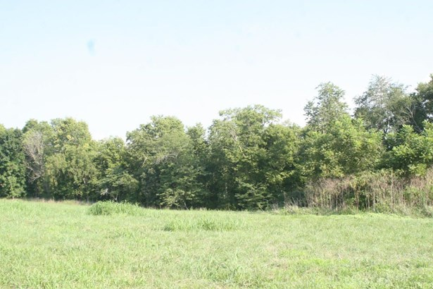Lot 5 Woodland Park, Clever, MO - USA (photo 3)