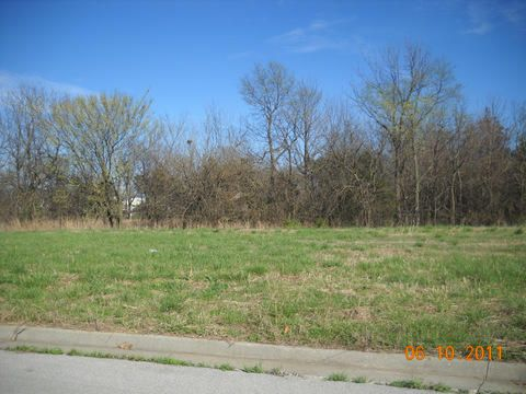 1009 Amanda Avenue, Monett, MO - USA (photo 1)
