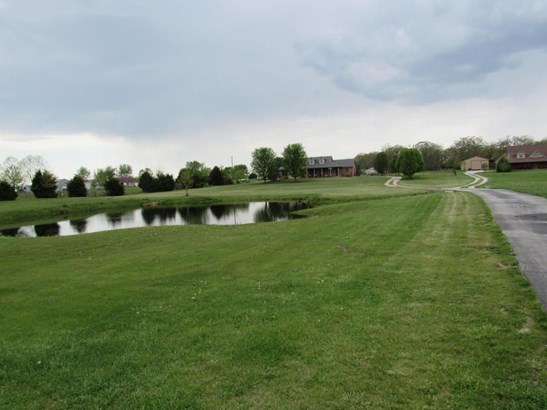 805 State Highway Vv, Rogersville, MO - USA (photo 2)