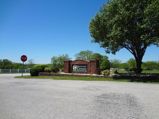 Lot 36 Whitetail Drive, Walnut Shade, MO - USA (photo 2)