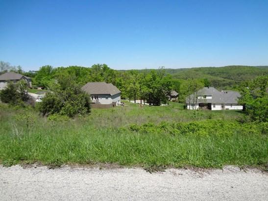 Lot 36 Whitetail Drive, Walnut Shade, MO - USA (photo 3)