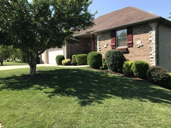 418 Spring Meadow Drive, Rogersville, MO - USA (photo 2)