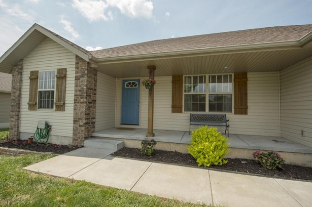 307 Union Hill Street, Clever, MO - USA (photo 2)