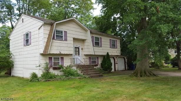 Split Level, Single Family - Plainfield City, NJ (photo 4)
