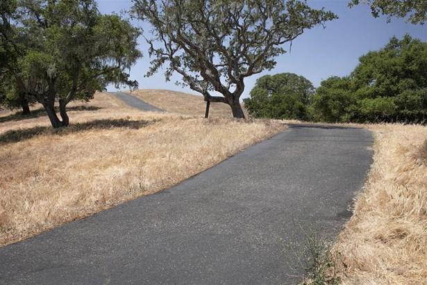 3791 Live Oak, Santa Ynez, CA - USA (photo 4)