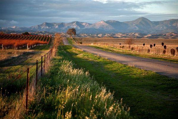 485 Meadowlark, Santa Ynez, CA - USA (photo 2)