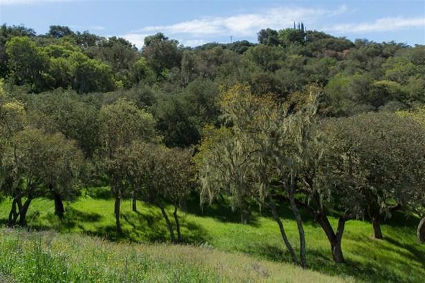 Oak Trail Ranch Road, Santa Ynez, CA - USA (photo 3)