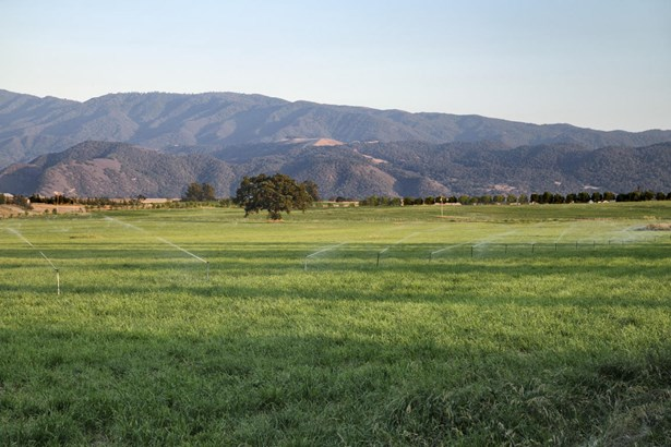 3800 Baseline Ave, Santa Ynez, CA - USA (photo 5)