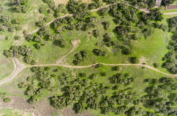 Oak Trail, Santa Ynez, CA - USA (photo 3)