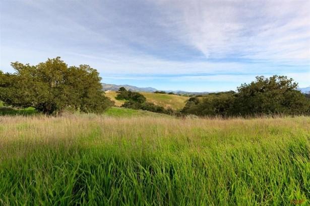 Oak Trail, Santa Ynez, CA - USA (photo 5)