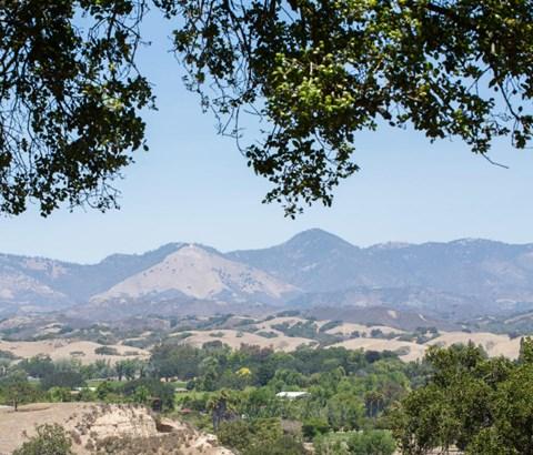 3025 Highway 154, Los Olivos, CA - USA (photo 4)