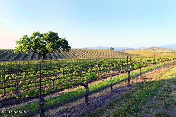 1575 Alisos, Santa Ynez, CA - USA (photo 3)