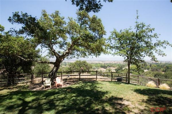 3025 Hwy 154, Los Olivos, CA - USA (photo 5)