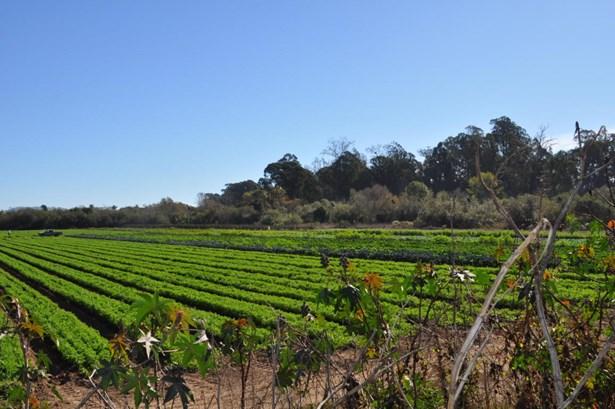 945 Ward, Santa Barbara, CA - USA (photo 5)