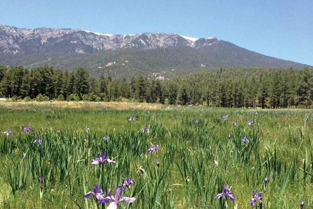 Ranch, Pleasure - Mora, NM (photo 2)