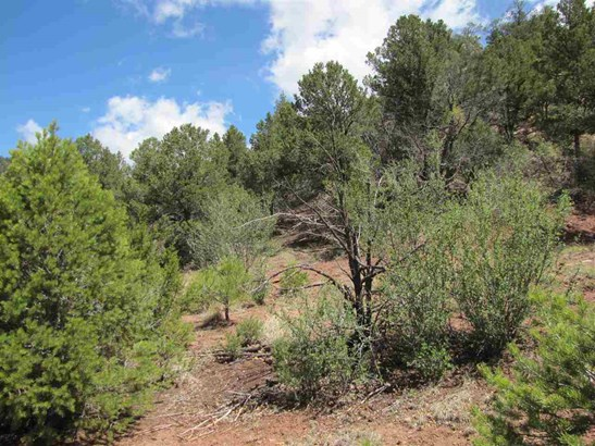 Residential Lot - Glorieta, NM (photo 3)