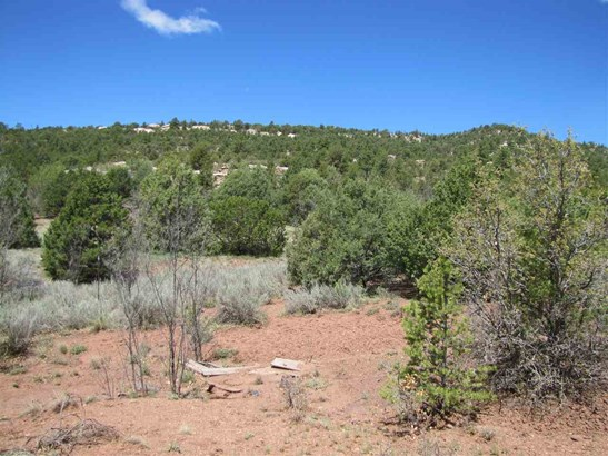 Residential Lot - Glorieta, NM (photo 5)
