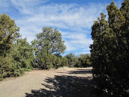 Residential Lot - Serafina, NM (photo 1)