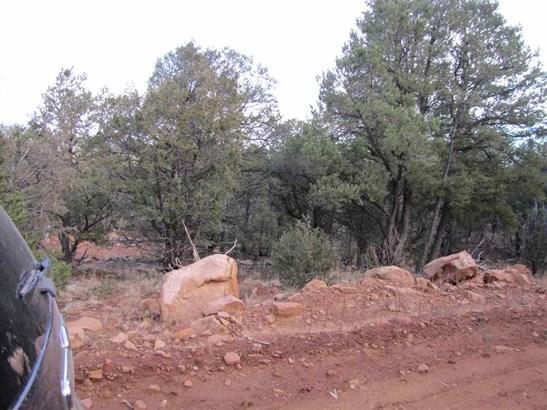 Residential Lot - Ribera, NM (photo 5)