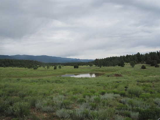 Undeveloped - San Geronimo, NM (photo 1)