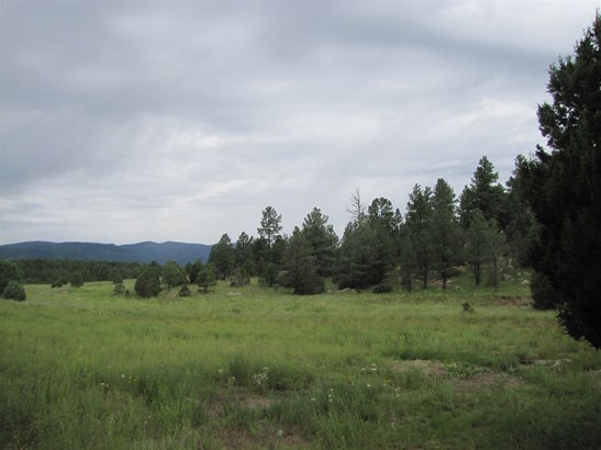 Undeveloped - San Geronimo, NM (photo 2)