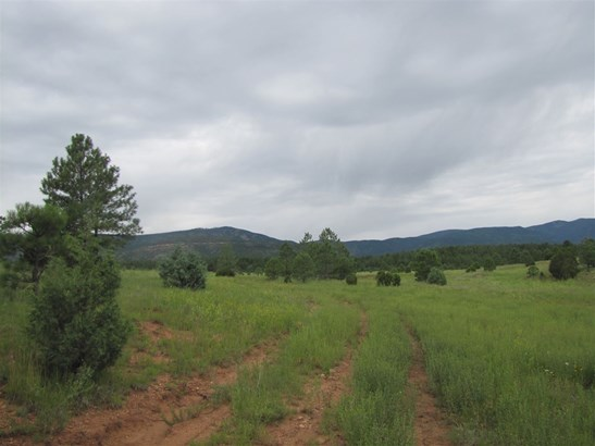 Undeveloped - San Geronimo, NM (photo 4)