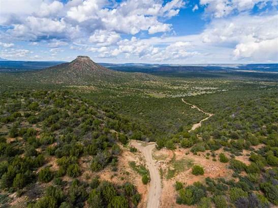 North New Mexico,Ranch, Single Family - Serafina, NM (photo 3)