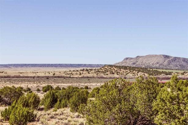 Pueblo, Single Family - Galisteo, NM (photo 4)