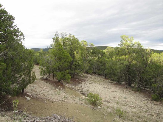 Residential Lot - Pecos, NM (photo 2)